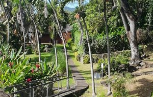 Excursion en Guadeloupe avec guide et chauffeur
